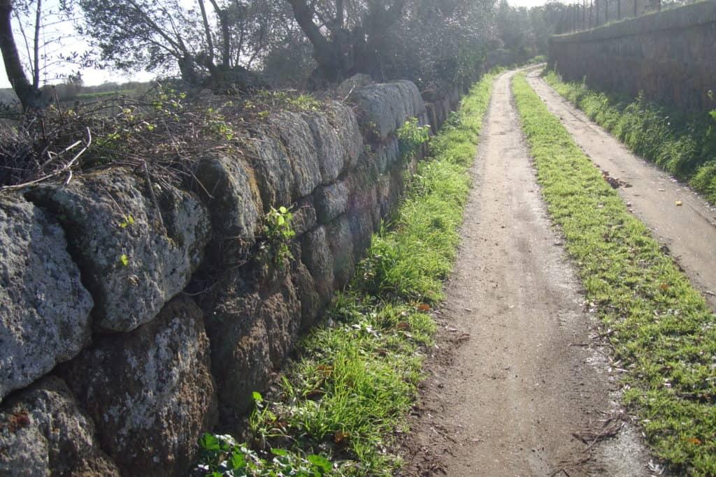 Cerveteri, a guardia delle mura antiche