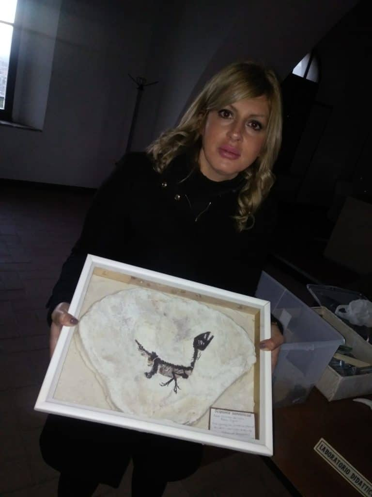 Cerveteri, corso per bambini Dinosauria: venerdì interviene il Geologo Roberto Agnolet