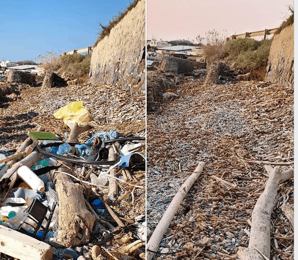 FOTONOTIZIA: l'intervento di NaturEducation sul nostro litorale