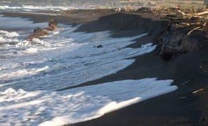 Ladispoli, erosione. Spiagge e stabilimenti balneari in pericolo