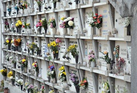 Cerveteri, emergenza cimiteri. A Borgo San Martino parte una petizione