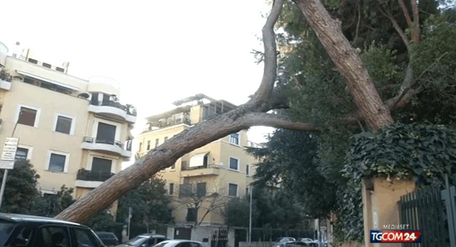 Maltempo, quasi 200 gli interventi dei Vigili del Fuoco tra Roma e Provincia