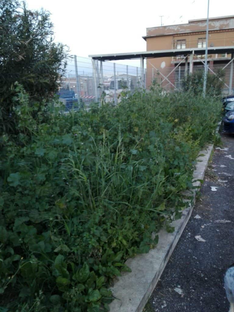 Ladispoli, parcheggio dei pendolari nel degrado
