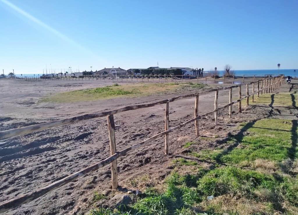 """Amici di Torre Flavia: """"Il fratino a Campo di Mare non ha colonizzato l'area dedicata al concerto di Jovanotti"""""""