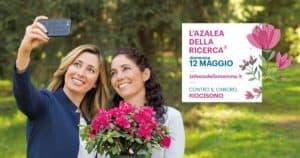 Ladispoli, per la Festa della Mamma regala l'Azalea della Ricerca contro il cancro