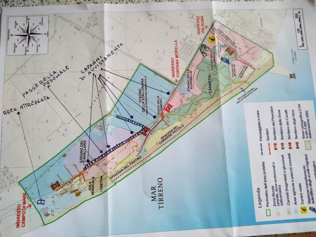 Torre Flavia, Giardina: necessari lavori di adeguamento dell'area