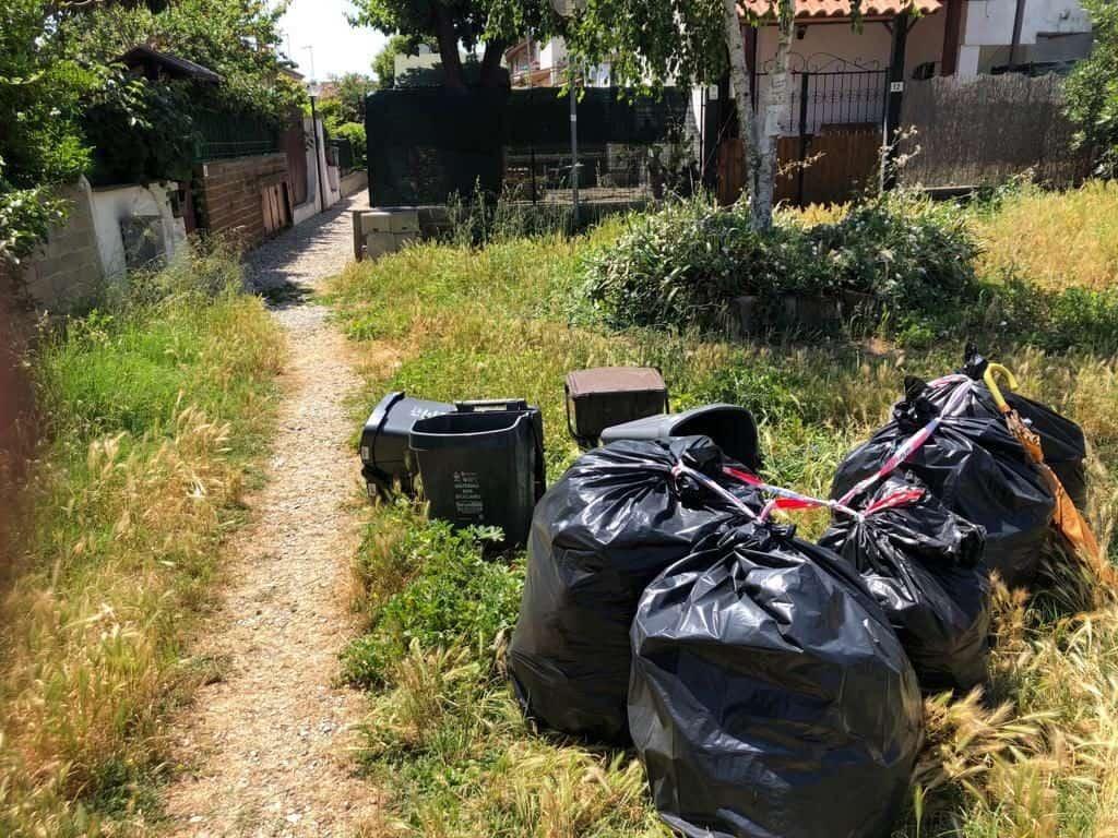 Cerveteri, igiene urbana: 11 sanzioni e due denunce penali nei controlli delle Zoofile