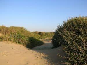 Dune di sabbia in Europa: anche Ostia nella selezione di Virail