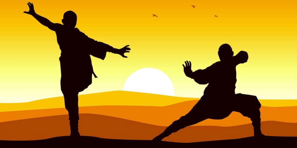 Il Gabbiano e il Tai Chi: tutti i benefici nel percorrere la via per il benessere