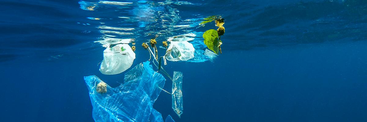 I pescatori di Fiumicino e Anzio insieme per la salvaguardia del mare - BaraondaNews