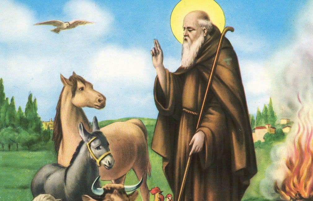 Domenica Montalto festeggia Sant'Antonio Abate
