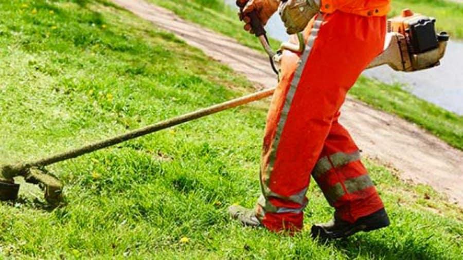 Ladispoli, riprende lo sfalcio delle aree verdi