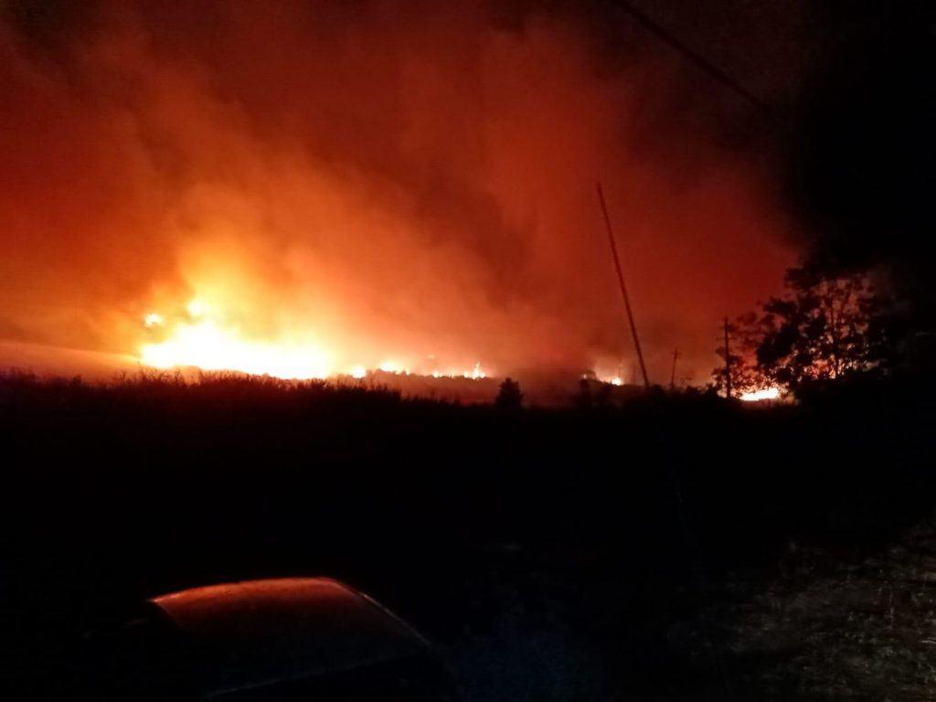 Civitavecchia, bruciati 40 ettari di sterpaglie, macchia mediterranea e canneti