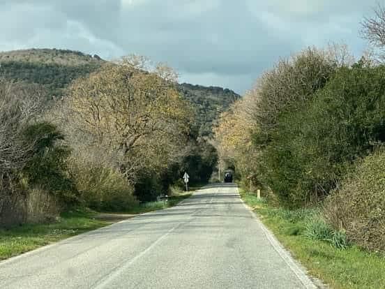 Lavori sulla provinciale, chiude il tratto Tolfa- Santa Severa