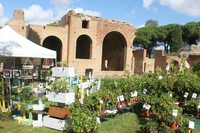 Civitavecchia, il 26 e 27 settembre torna 'Terme in Fiore' Al Parco Terme di Traiano