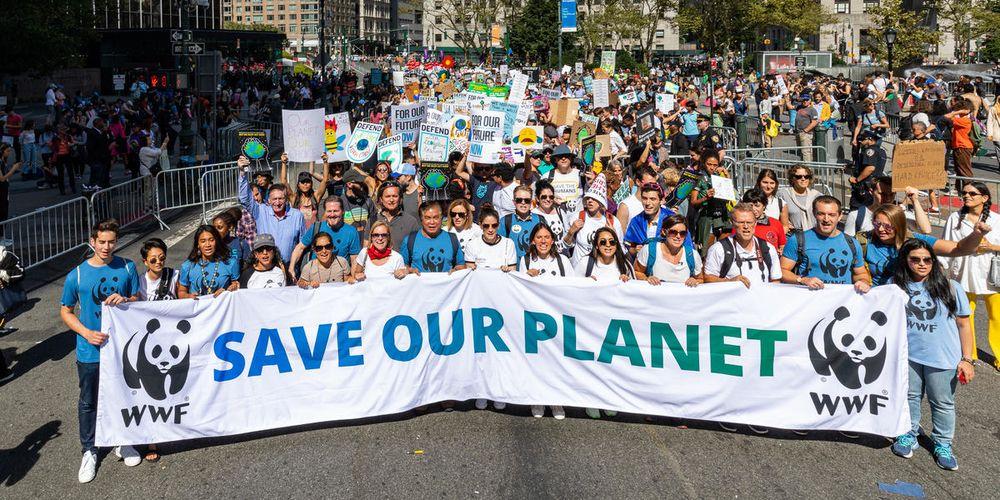 """Il WWF lancia l'allarme: """"Con il clima che cambia gravi rischi per salute e sicurezza umana"""""""