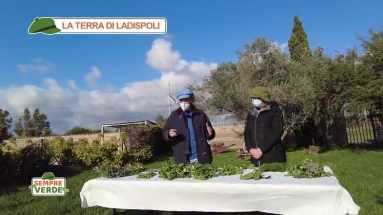 """Lazzeri: """"Ottimi ascolti per le trasmissioni tv che hanno raccontato Ladispoli"""""""